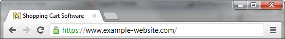 SSL Certificate for a domain
